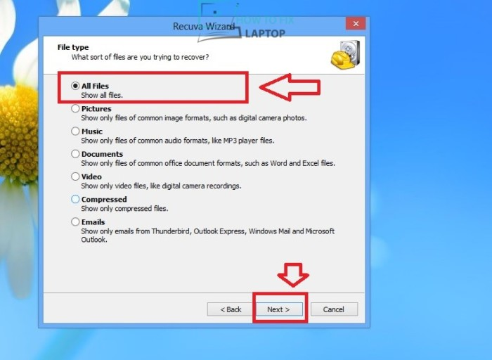 Choose which sort of files to recover — How to fix laptop